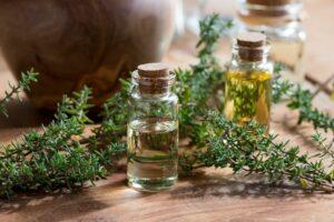 Frischer Thymian Und ätherische Öle