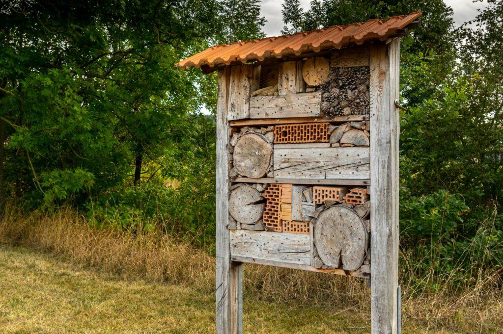 Nisthilfen für Wildbienen: Tipps für den Garten