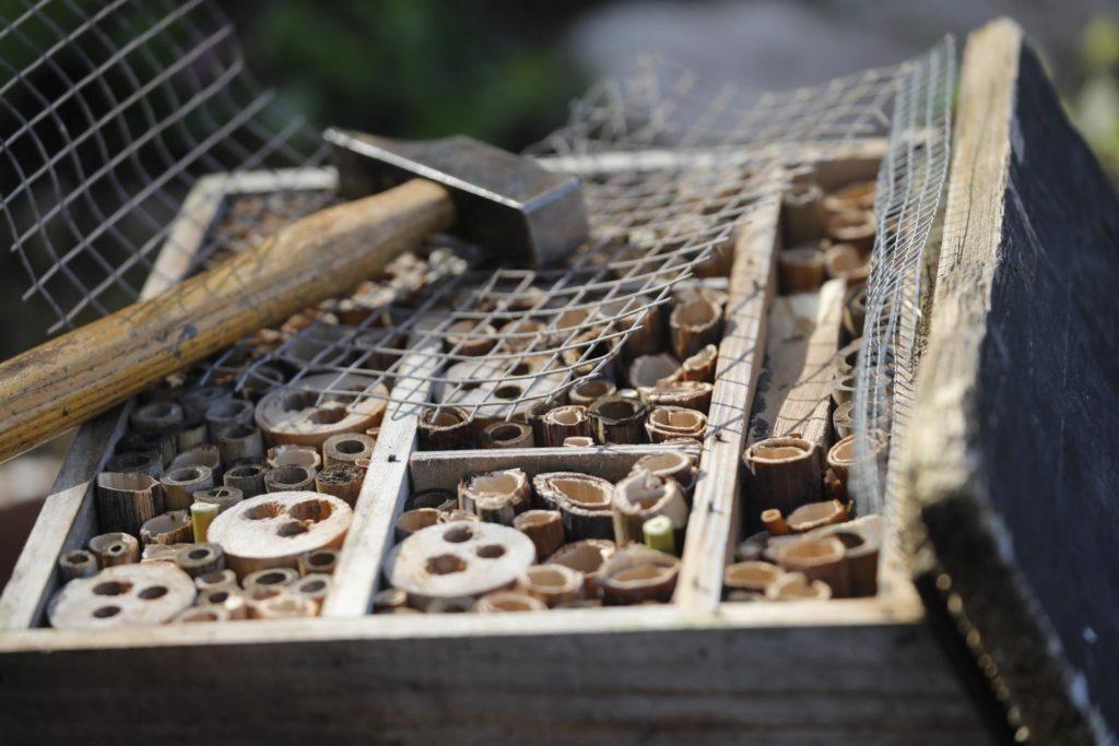Bau eines Insektenhotels
