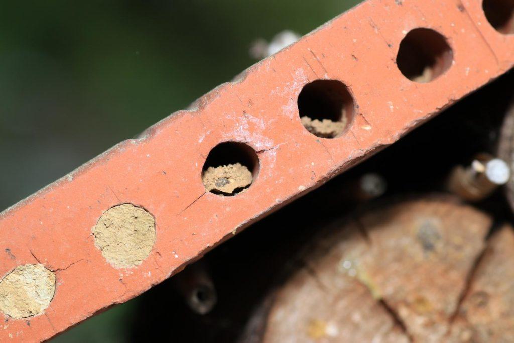 Nisthilfe für Wildbienen aus altem Ziegel