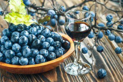 Schlehen ernten: Erntezeitpunkt, Vorgehen & Verarbeitung der Früchte