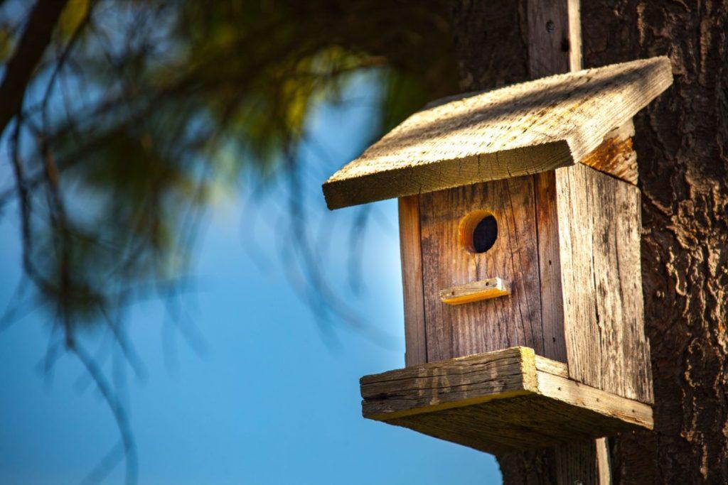 Vogelhaus aus Holz an Baum hängend