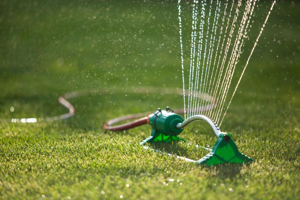 Rasen wird durch Sprinkler bewässert