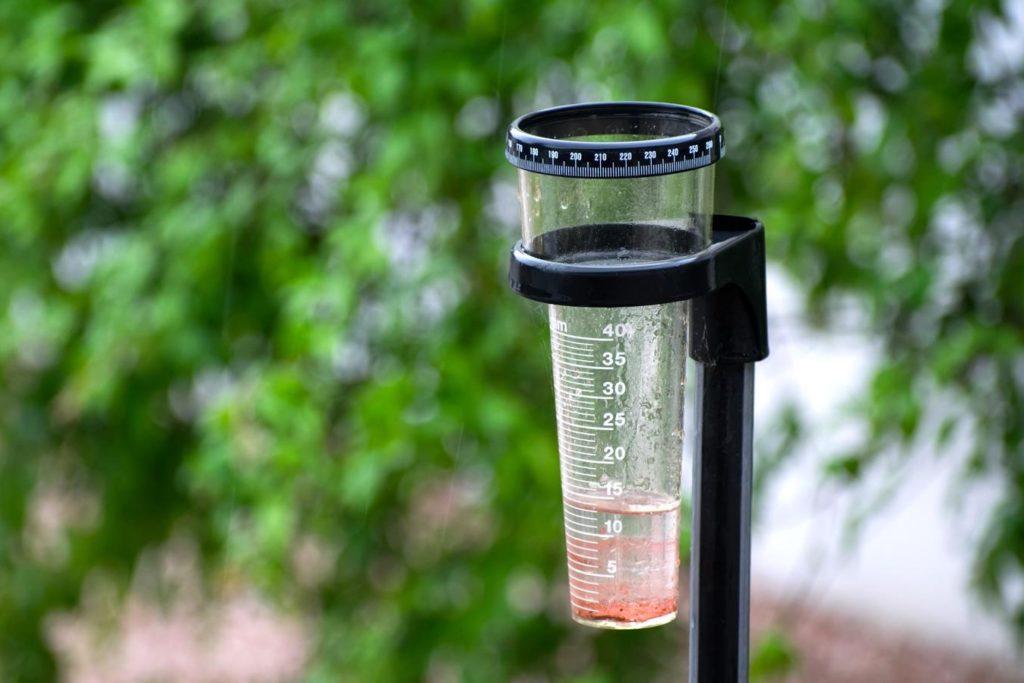 Regenmesser, zur Bestimmung der richtigen Gießmenge