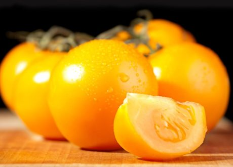 Rundliche Gelbe Tomate