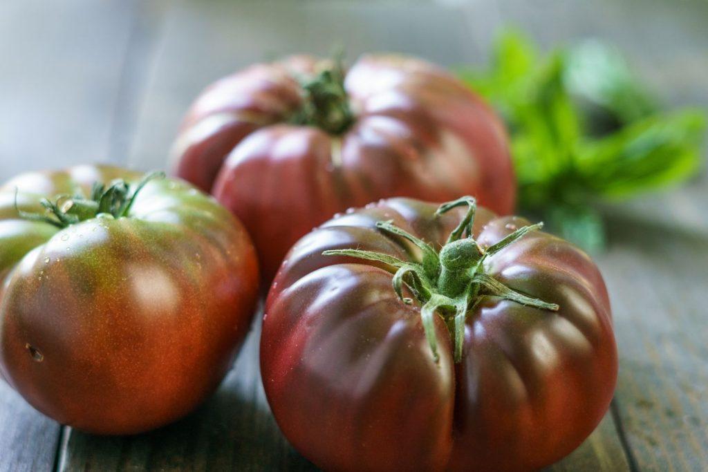 Black-Brandywine-Tomaten geerntet