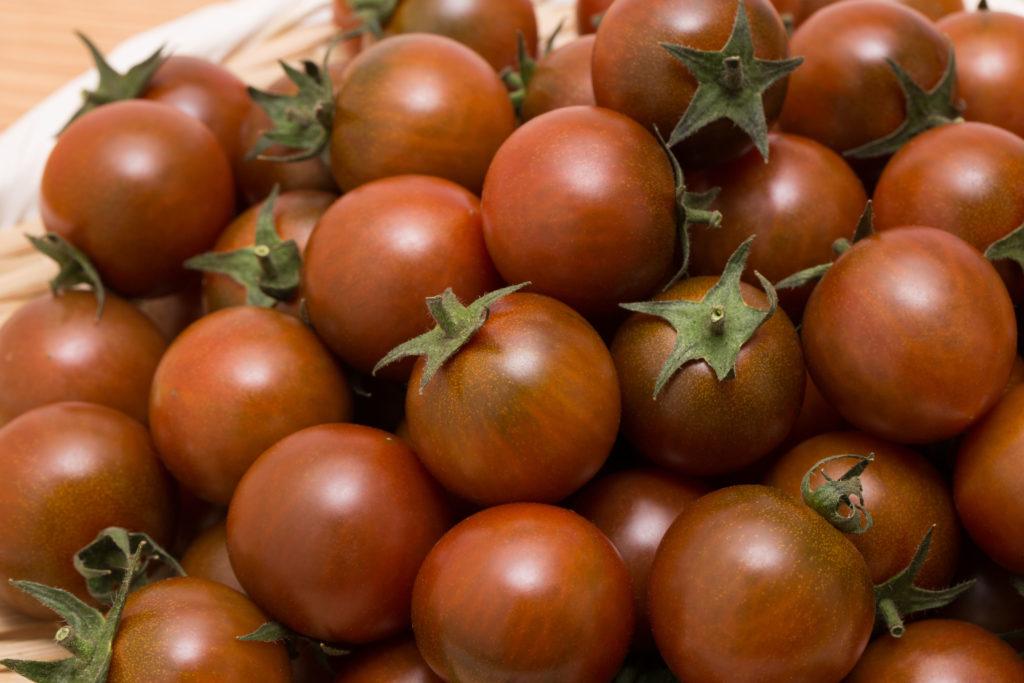 Black-Cherry-Tomaten geerntet