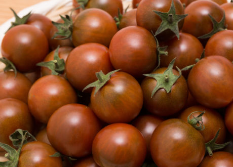 Black-Cherry-Tomaten Geerntet