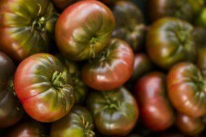 Cherokee Purple Tomaten