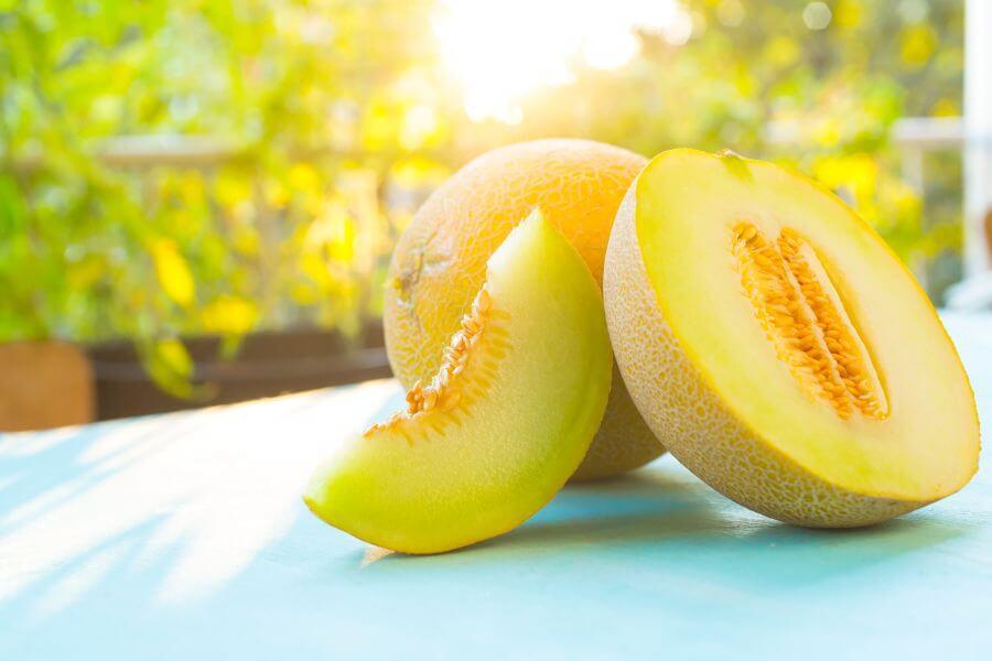 Reife Melone