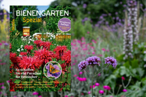Bienengarten Sonderheft Des Deutschen Bienen-Journals