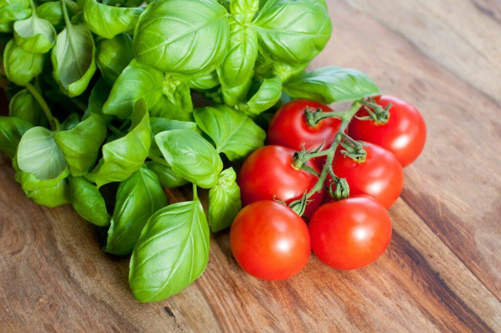 Tomaten Rotkäppchen mit Basilikum