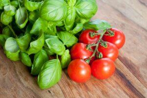 Rotkäppchen Tomaten Mit Basilikum
