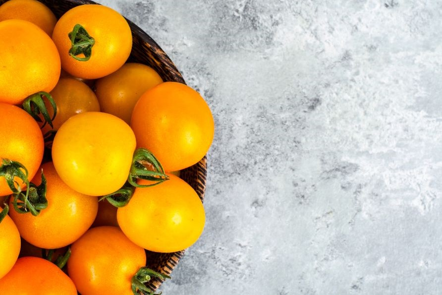 gelbe Sunviva-Tomaten