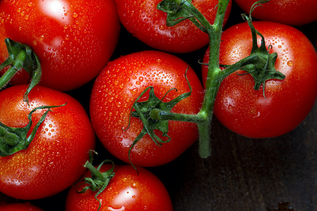 reife Tamina-Tomaten
