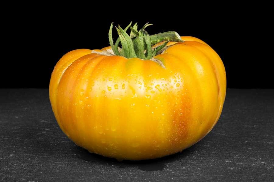 Tomatensorte Hillbilly