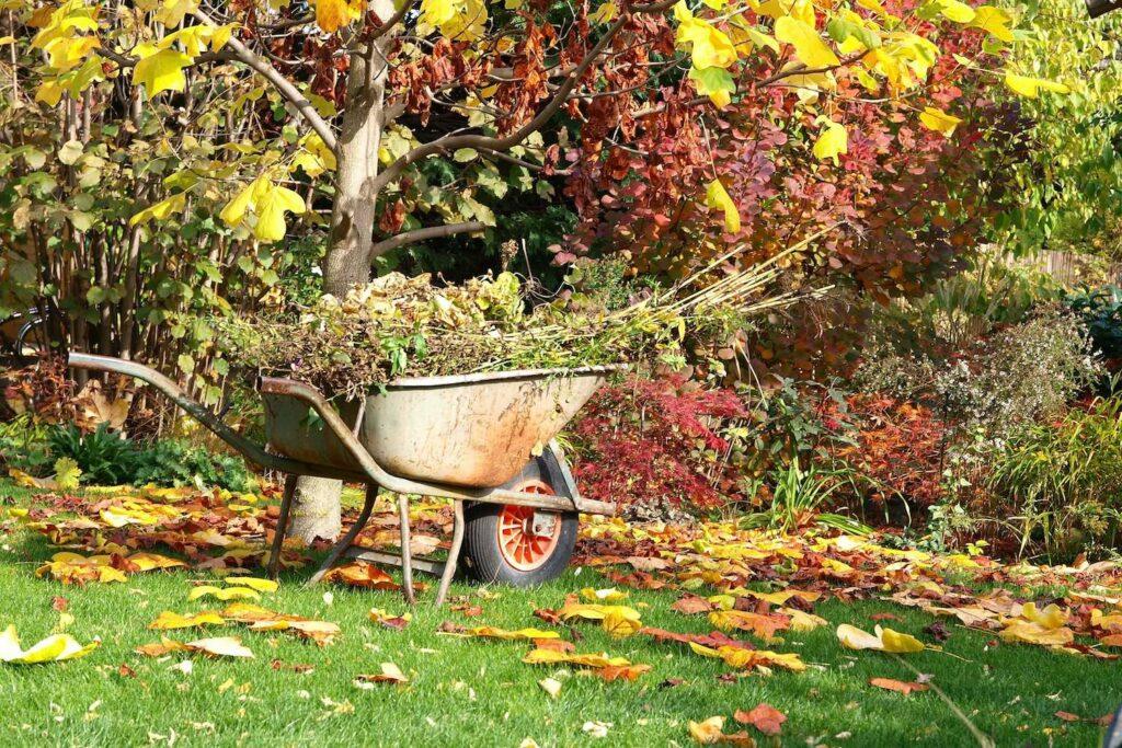 Schubkarren im Garten