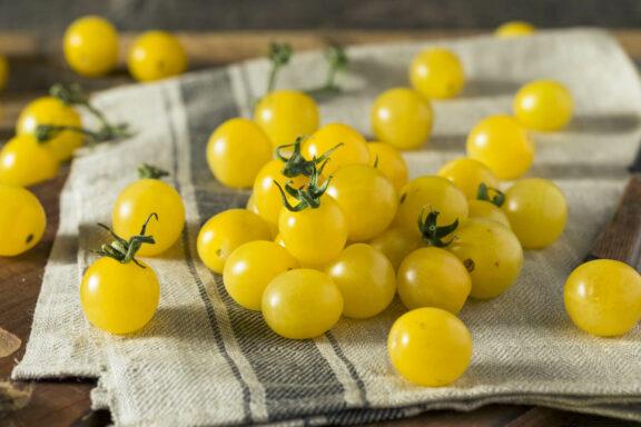 Tomate 'Bianca': Geschmack, Aussehen & Besonderheiten beim Anbau
