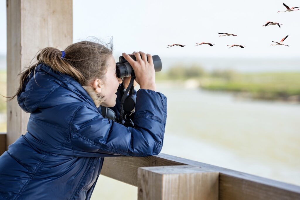 Kind bei Vogelbeobachtung