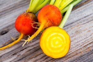 Gelbe Bete: Anbau & Pflege im Garten