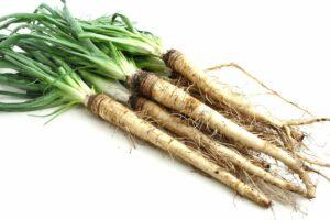 Haferwurzel: Anbau, Pflege & Ernte der alten Gemüsesorte