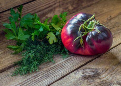 Tomatensorte Amethyst Jewel