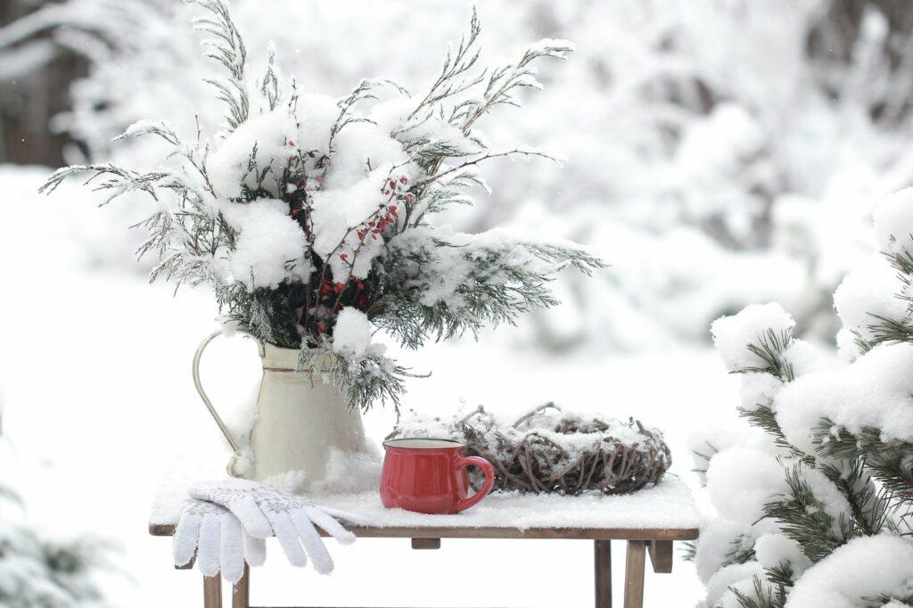 Gartenarbeit im Dezember: Alles auf einen Blick
