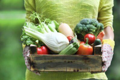 Gemüse mit viel Vitamin C: Welches Gemüse hat am meisten Vitamin C?