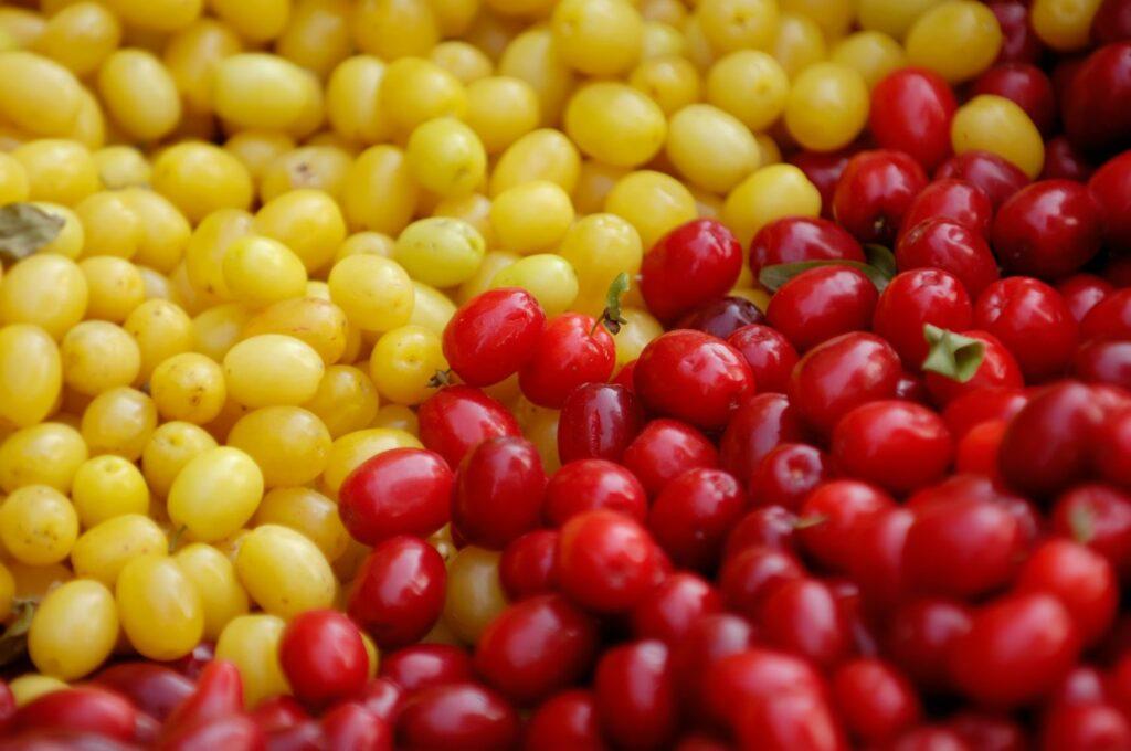 gelbe und rote Kornelkirschen