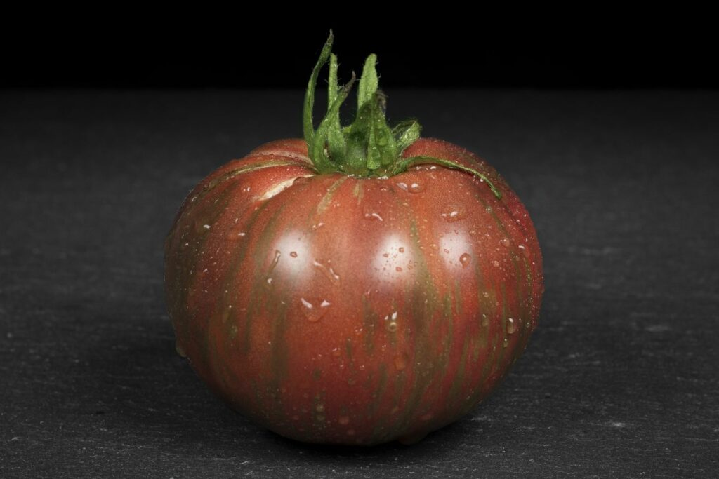 Hand hält Chocolate Stripes Tomate