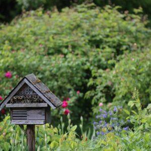 Insektenhotel: Standort, Nutzen & Bewohner
