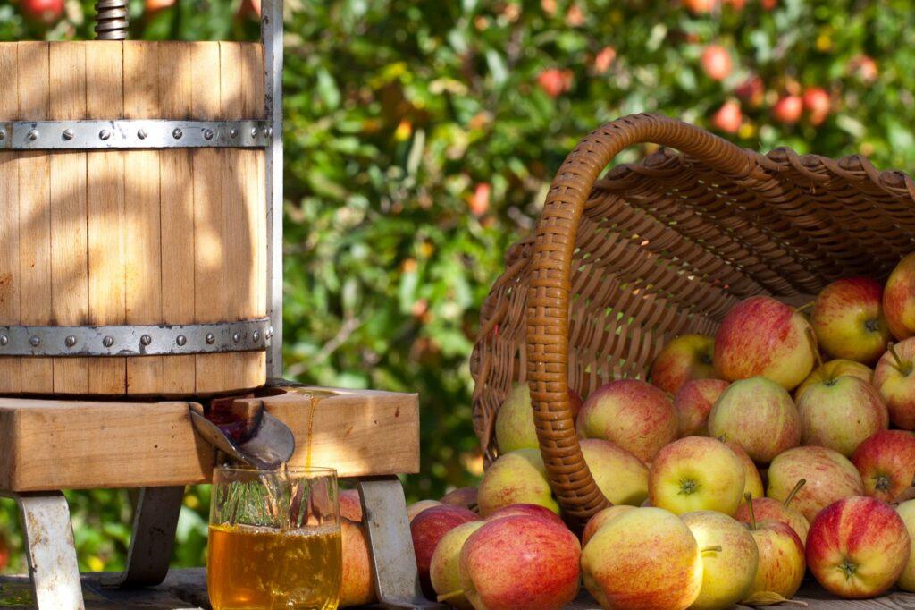 Äpfel und Saftpresse