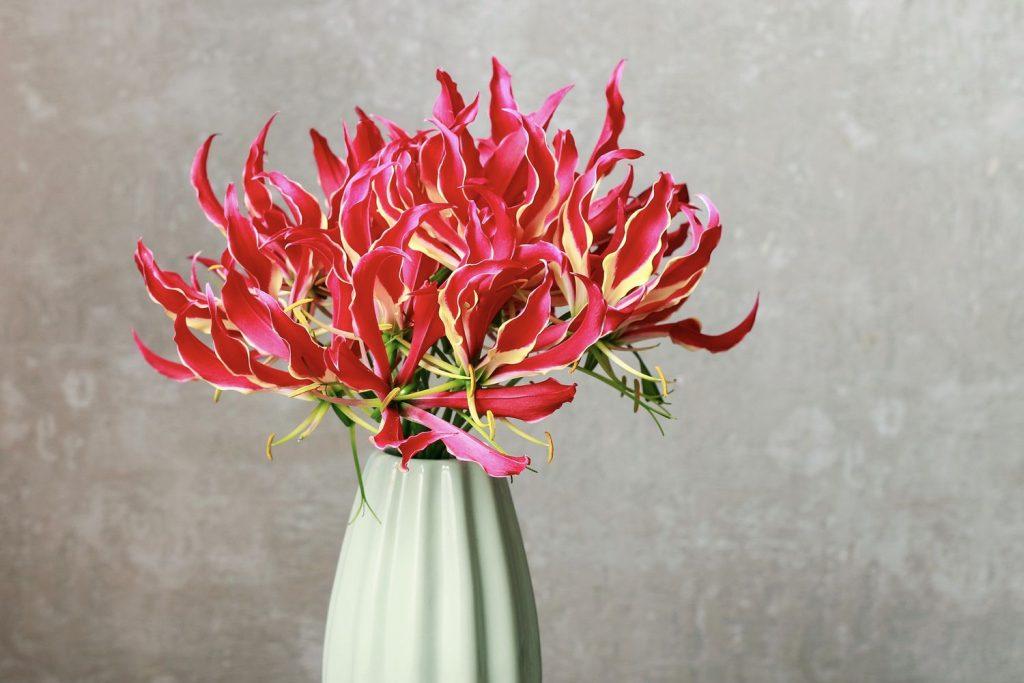 Ruhmeskrone in der Vase