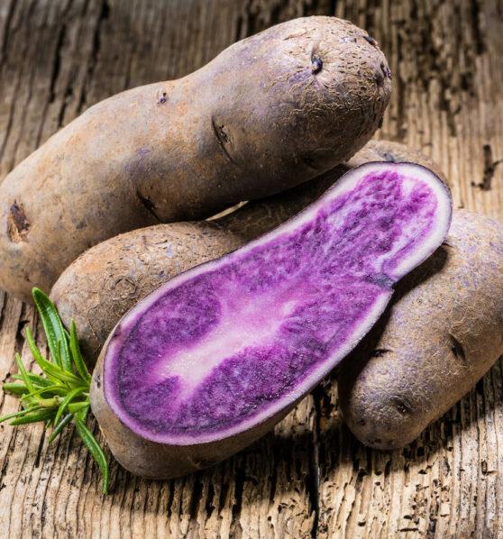 Lila Kartoffeln: Sorten, Anbau & Verwendung von violetten Kartoffeln
