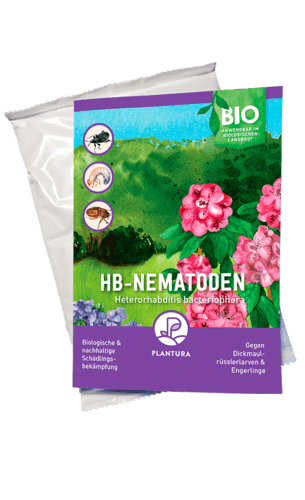 Plantura HB-Nematoden