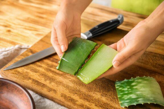 Aloe vera ernten & verwenden