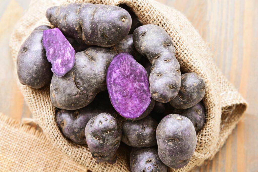 Violette Spätkartoffeln