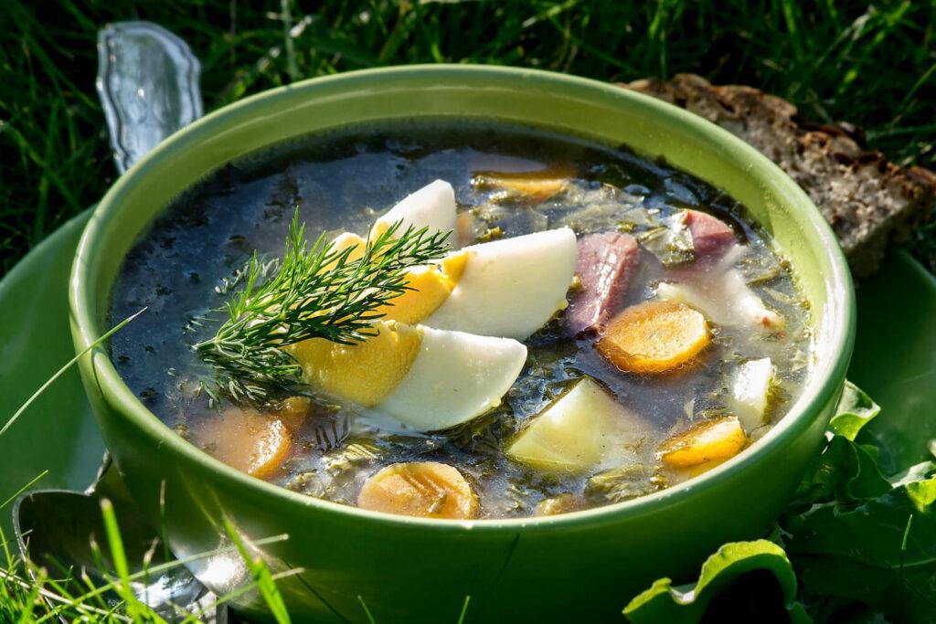 Verwendung von Sauerampfer in einer Suppe
