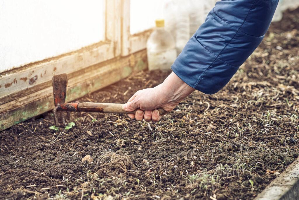 Bodenbearbeitung zur Bekämpfung