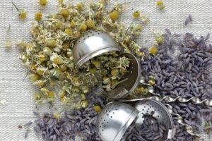 Kräuter zum Einschlafen: Schlaffördernde Pflanzen für Tees & Co.