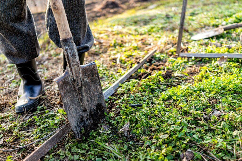 Umgraben für Gemüsebeet