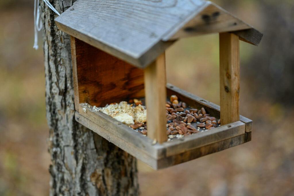 sauberes Vogelhäuschen